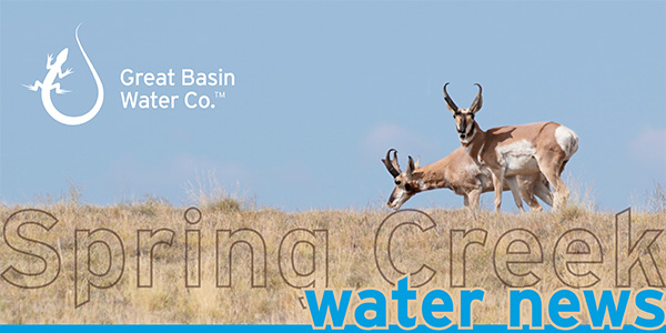 Great-Basin-Water-Spring-Creek-Header